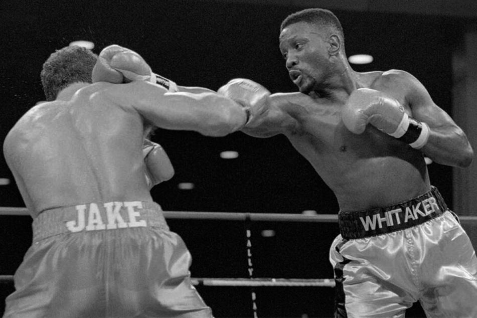18. November 1995, USA, Atlantic City: WBC-Weltergewichtsmeister Pernell Whitaker (r) im Boxkampf gegen Herausforderer Jake Rodriguez .