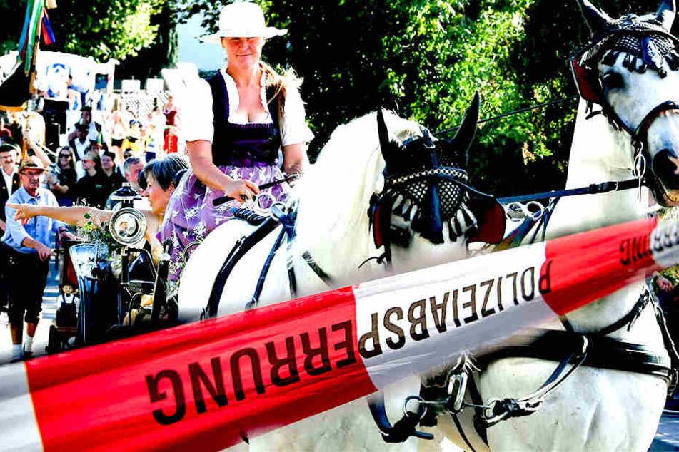 Herabstürzender Ast verletzt neun Menschen auf Pferdemarkt