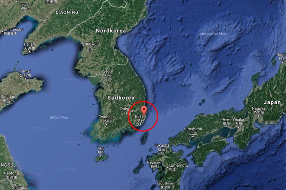 In Südkorea kamen bei einem schweren Busunglück zehn Menschen ums Leben.