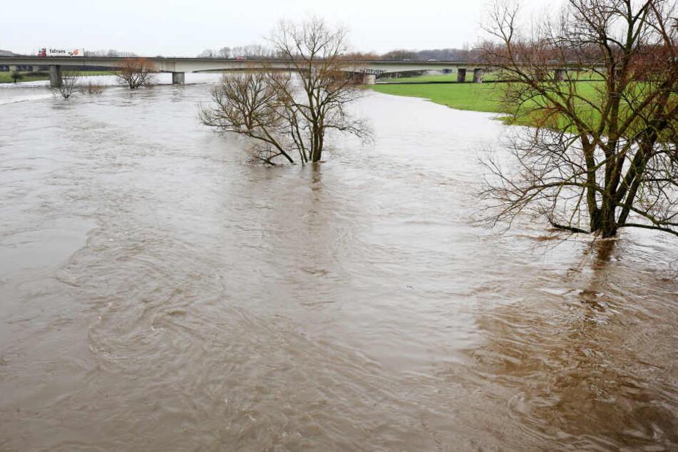 Der anhaltende Regen lässt den Rhein und all seine Nebenflüsse, wie hier die Ruhr, stetig ansteigen. Nun wurde der Schiffahrtverkehr eingestellt.