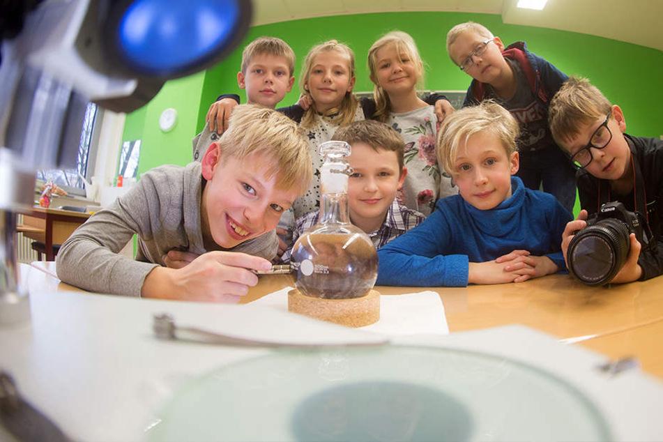 Sächsische Mini-Wissenschaftler forschen sich an die Spitze