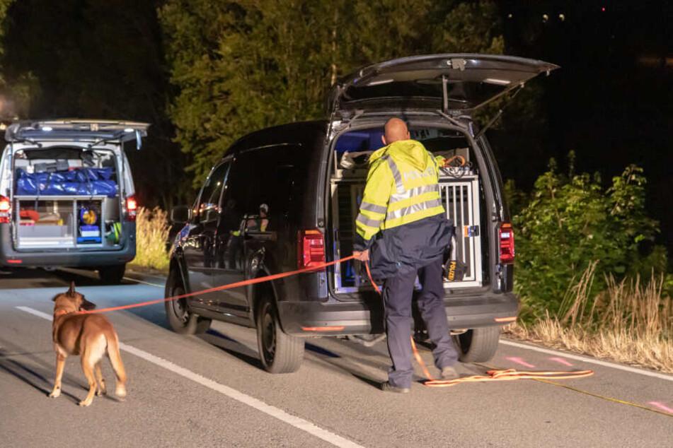 Zum Einsatz kam auch ein Fährtensuchhund der Polizei.