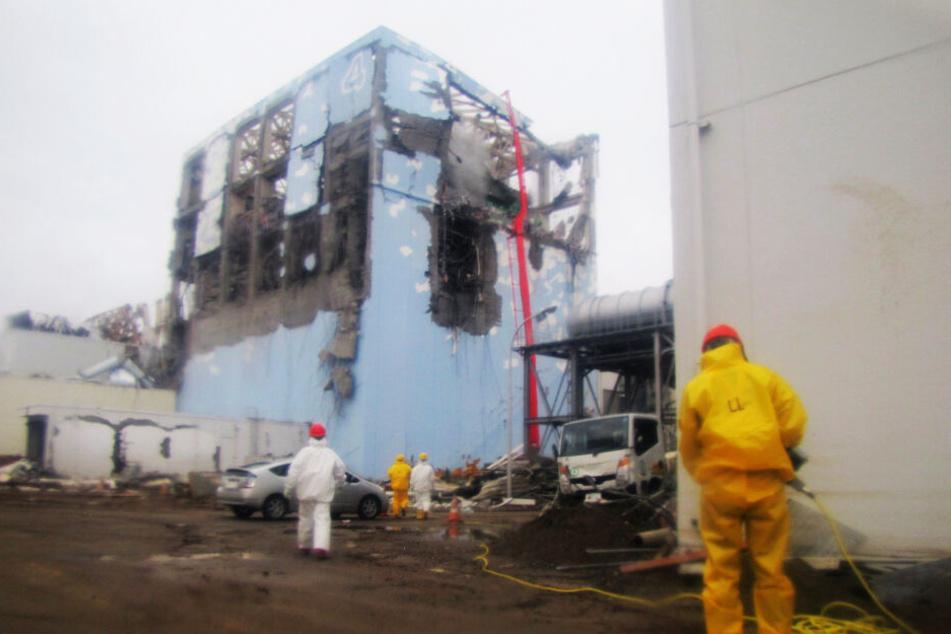 Am 23. März 2011 arbeiteten Ermittler den Gau vor Ort auf.