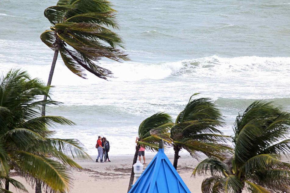 Die ersten Vorboten: Der schwere Hurrikan Matthew steuert Florida an.