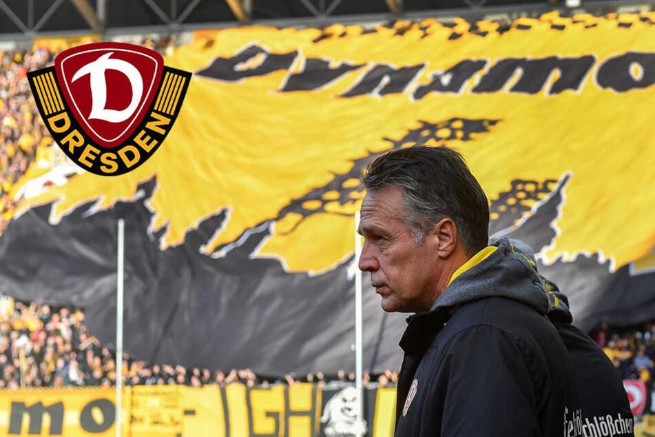 Mit der gelben Wand im Rücken: Überholt Dynamo heute Union?