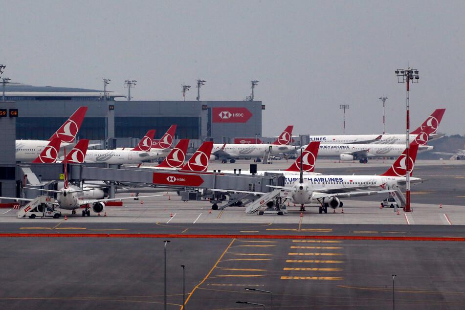 Zahlreiche Flugzeuge der Turkish Airlines stehen am Flughafen in Istanbul.