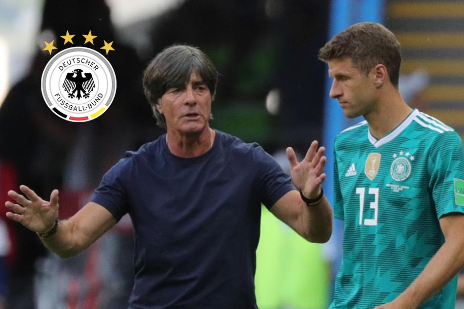 Trägt Thomas Müller bald wieder DFB-Dress? Toni Kroos mit Einschätzung