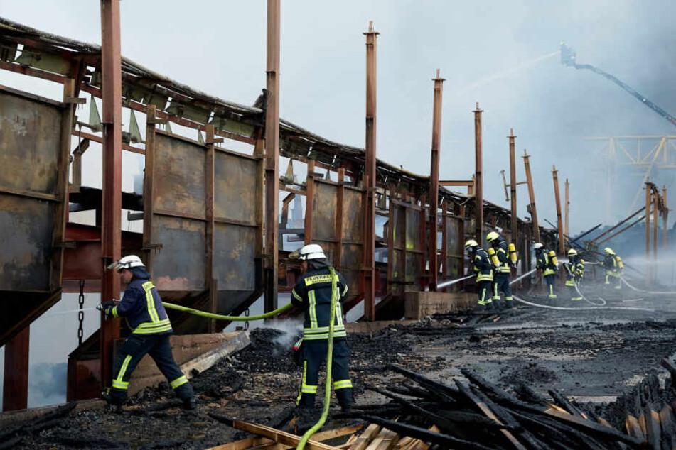 Flammeninferno vernichtet Sägewerk: Lagerhallen brennen bis auf Grundmauern nieder