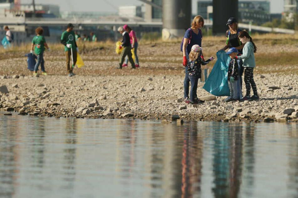 Vielerorts sammelten Freiwillige, wie hier in Düsseldorf, den Müll am Rheinufer ein.