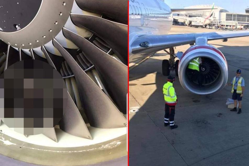 Unglaublich, was sich hier in einer Flugzeug-Turbine versteckt!