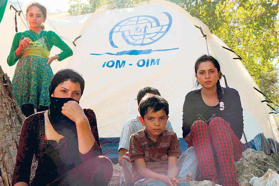 Jesidische Flüchtlinge in einem Zeltlager im Nordirak. Die Grünen wollen 500  nach Sachsen holen - für zunächst zwei Jahre.