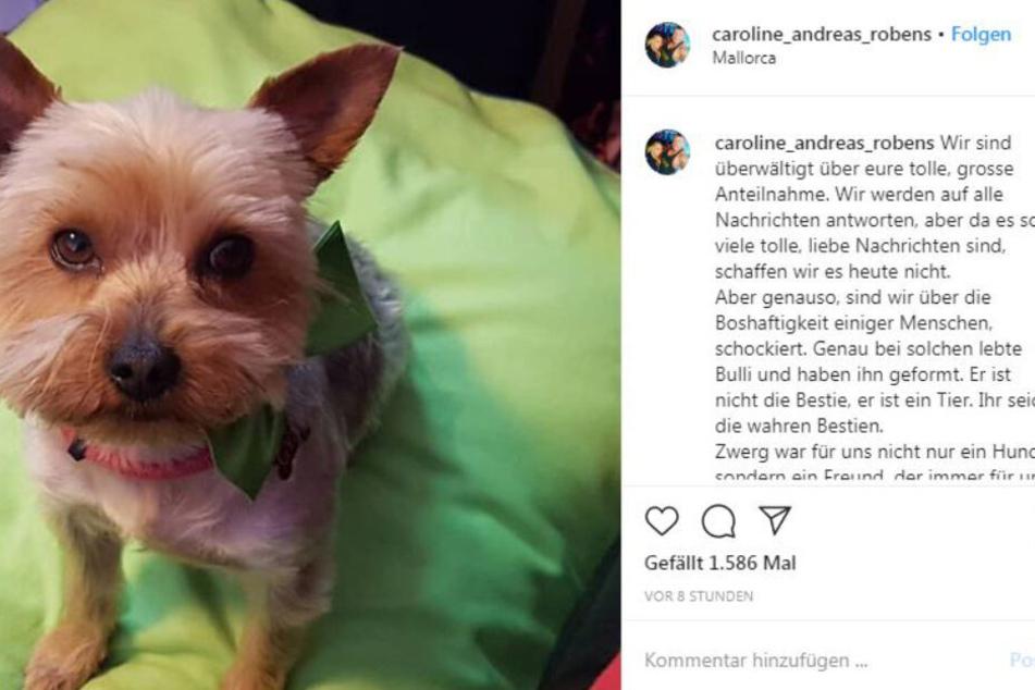 Via Instagram bedanken sich Caro und Andreas für die große Anteilnahme.