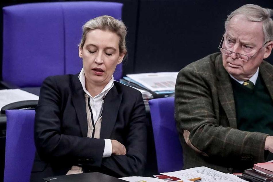 Fraktionsvorsitzende der AfD Alice Weidel und Co-Vorsitzender Alexander Gauland.
