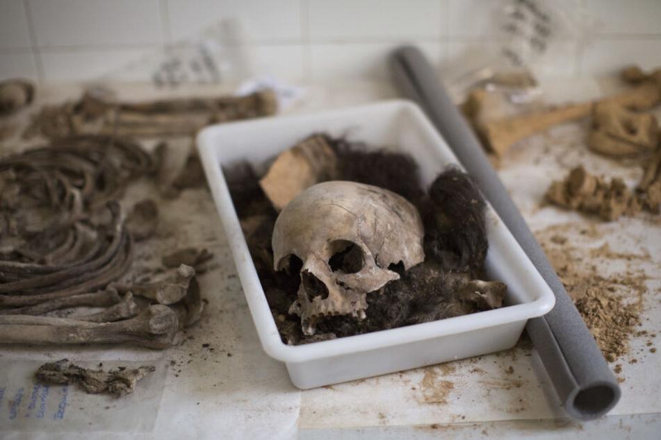 Die Leiche wurde Juli 2017 exhumiert. (Symbolbild)