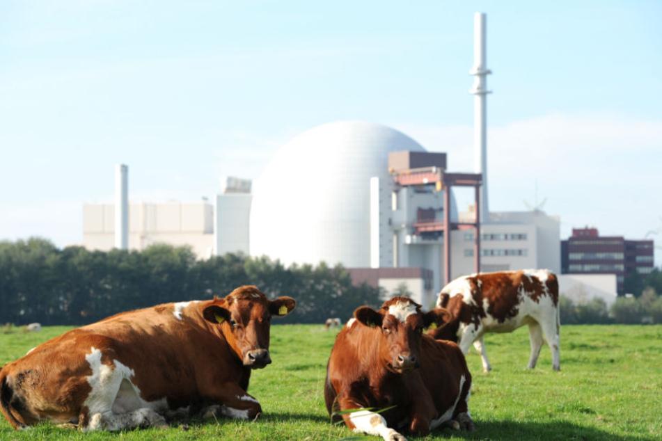 Das Atomkraftwerk Brokdorf soll eigentlich erst Ende 2021 stillgelegt werden.