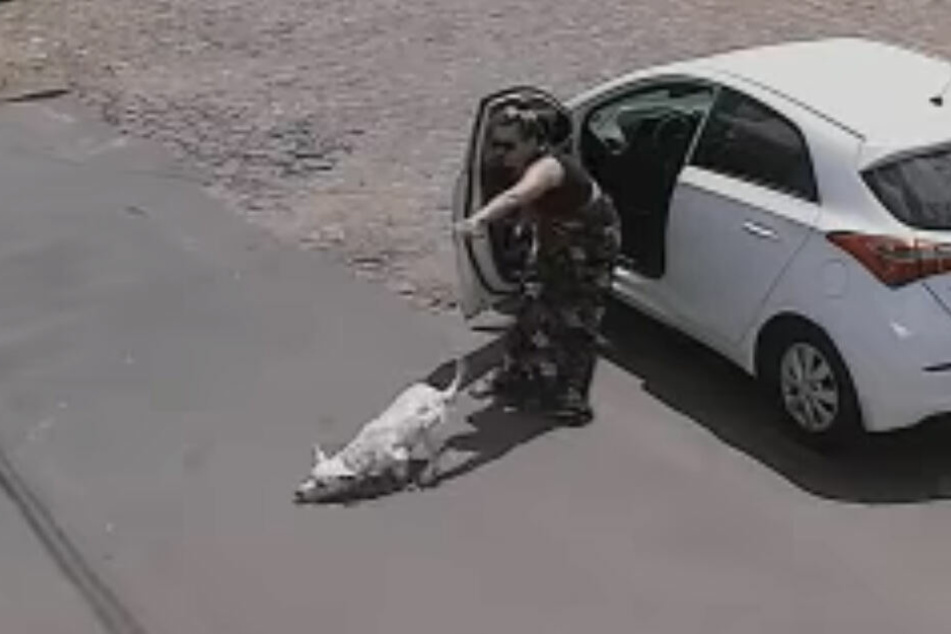 Zweimal am selben Tag setzte diese Frau ihren Hund aus.
