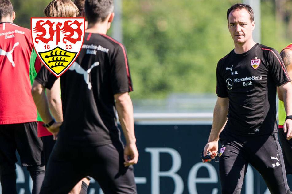 Letzte Patrone: So will Willig den VfB Stuttgart retten