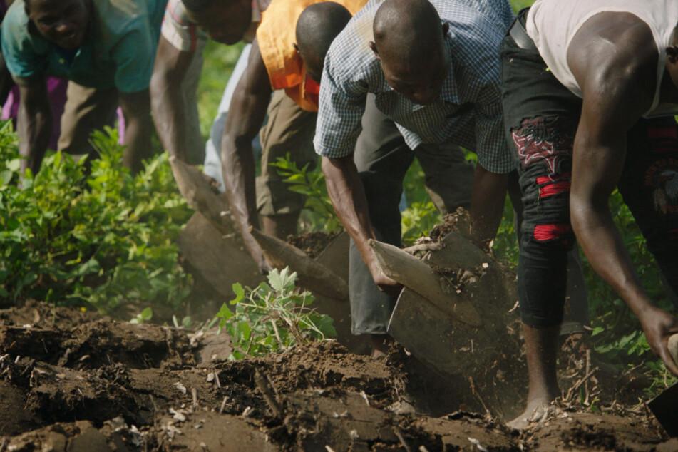 Das Pflanzen von Bäumen soll der Wüstenbildung entgegenwirken und den Menschen vor Ort wieder Möglichkeiten geben, in ihrer Heimat zu bleiben.