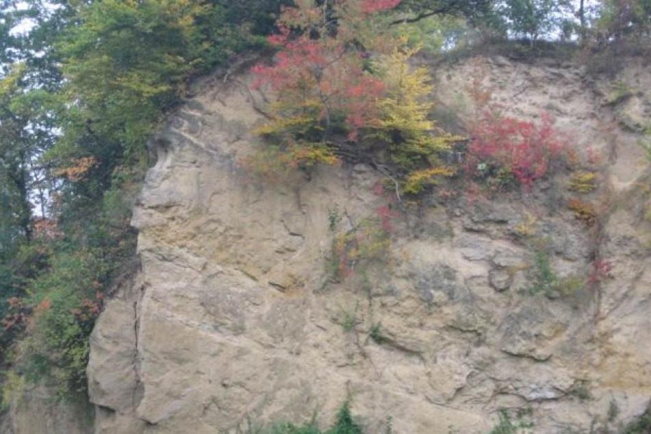 Die Steilwände sind typisch für den Doberg.
