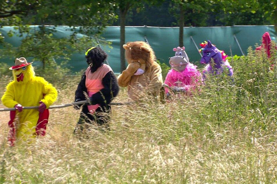 """Im """"Sommerhaus der Stars"""" müssen die Männer bei einem Spiel lustige Tierkostüme tragen."""