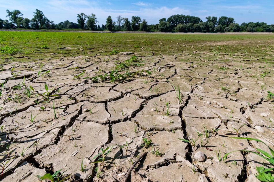 Zu trocken und zu warm: Trinkwasserversorgung in Bayern gefährdet