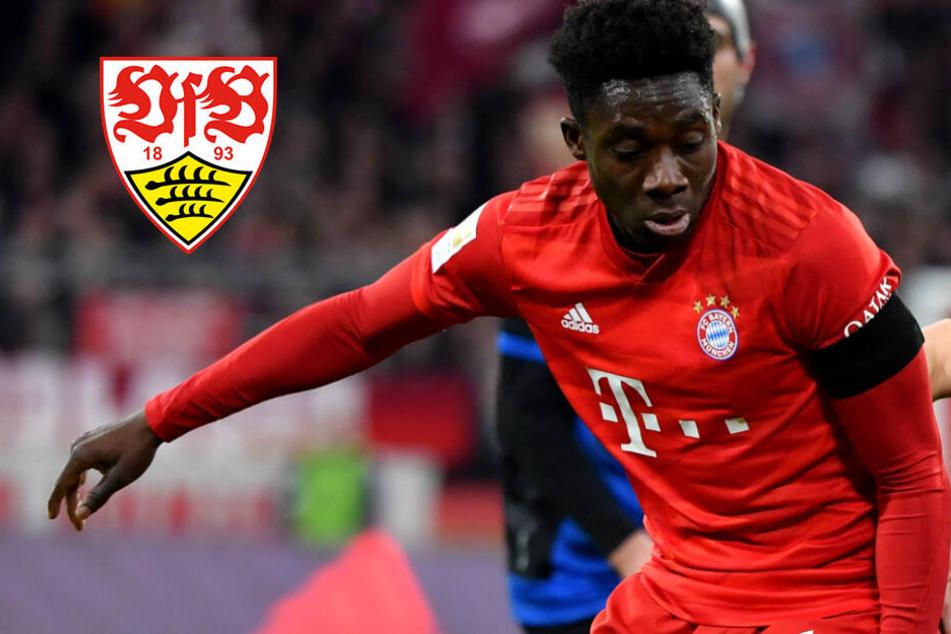Beinahe wäre Bayern-Star Alphonso Davies beim VfB Stuttgart gelandet