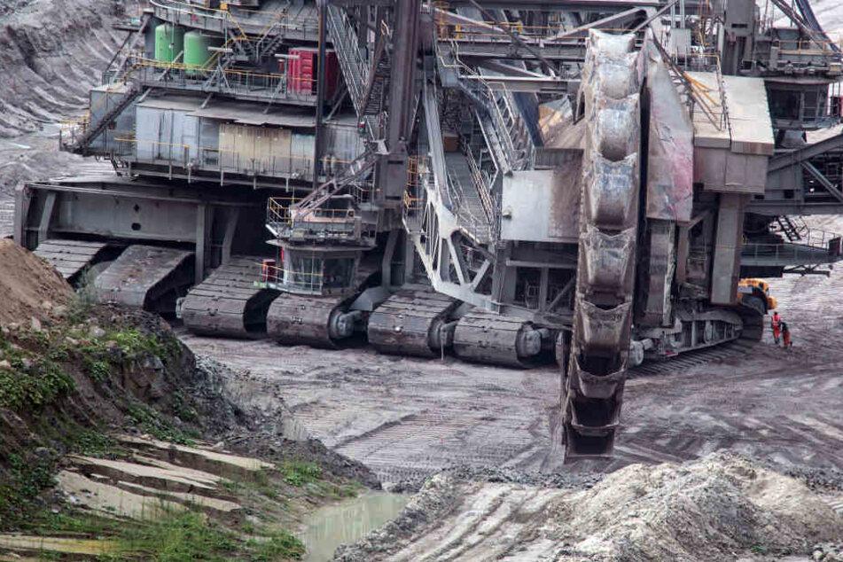 Ein Schaufelradbagger arbeitet im Tagebau Hambach bei Kerpen (Archivbild).