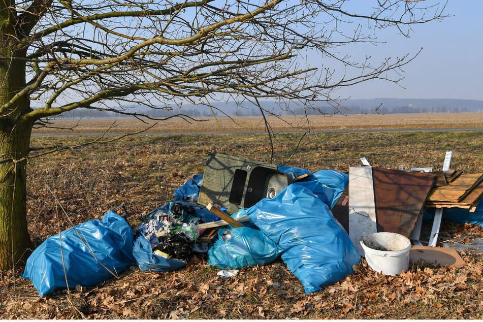 Sperrmüll inmitten der Natur: Sachsens Kommunen haben immer häufiger mit illegal entsorgtem Abfall zu tun.