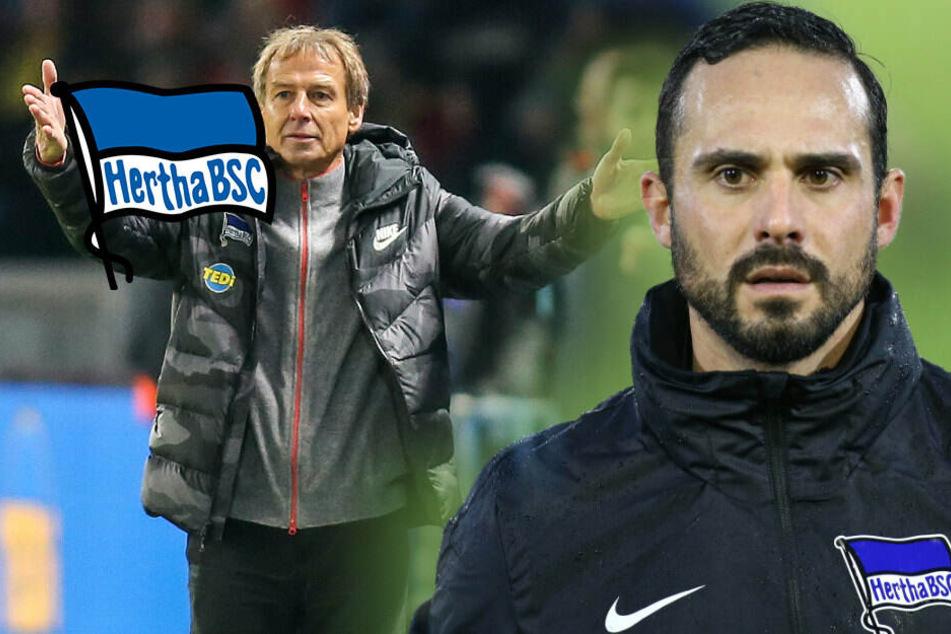 Klinsi-Nachfolger bei Hertha BSC: Macht es Nouri wie Jogi Löw?