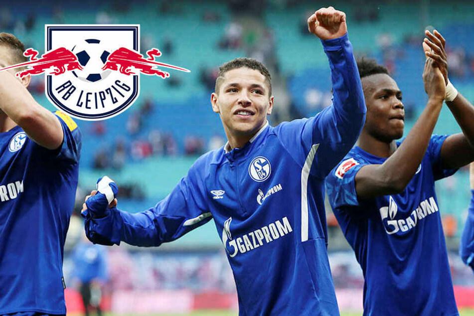 """Fette Schalke-Party bei RB Leipzig: """"Die haben uns schon überrascht!"""""""