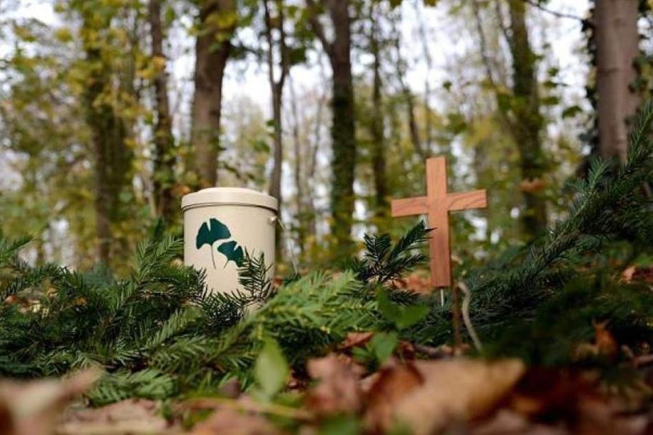Kein gewöhnliches Grab: Auf einer besonders gekennzeichneten Fläche soll die Asche von Verstorbenen verteilt werden dürfen. (Symbolbild)