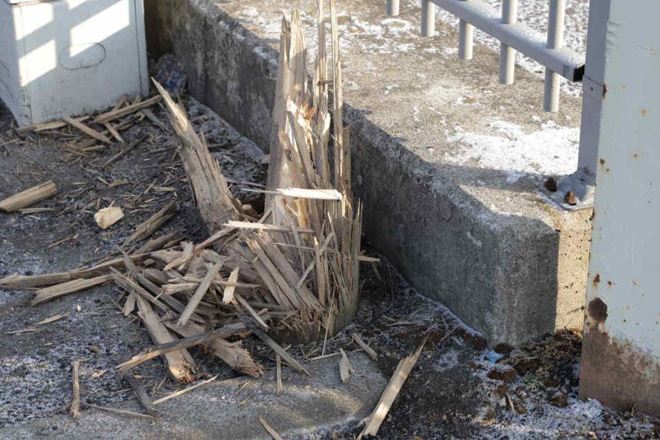 Der Mast war offenbar durch die Kälte geborsten.