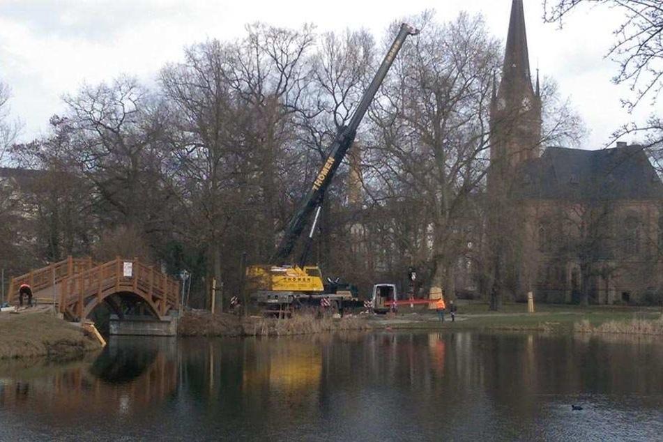 Mit schwerem Gerät wurde die Holzbrücke an ihren Bestimmungsort gebracht.