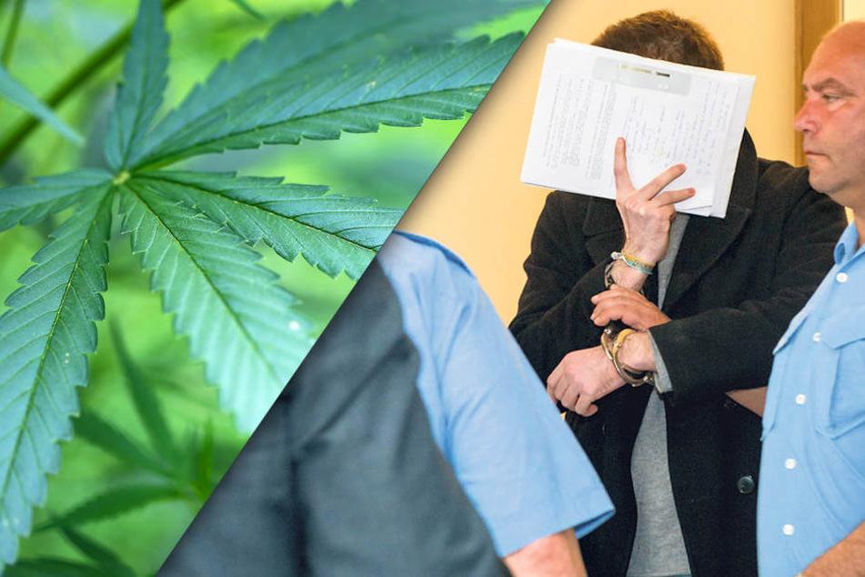 Marihuana-Gärtner muss für über drei Jahre in den Knast!