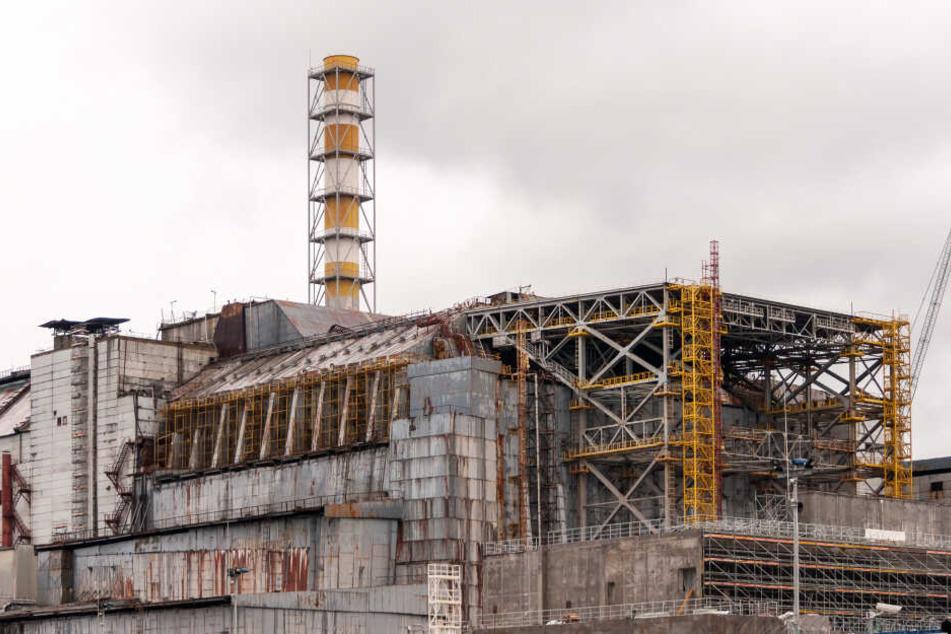 Blick auf das Kernkraftwerk Tschernobyl.