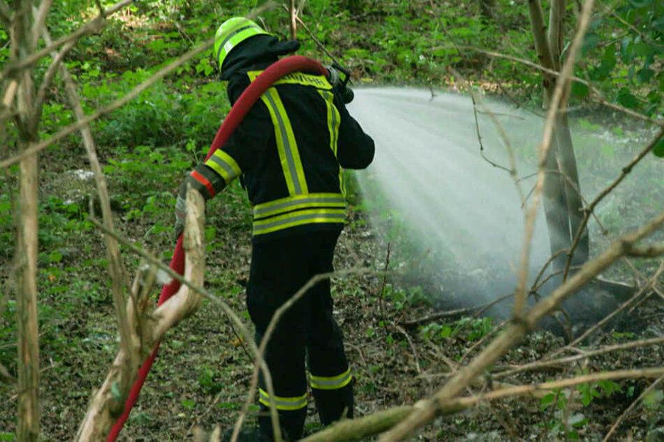 Die Feuerwehr konnte das Feuer unter Kontrolle bringen.