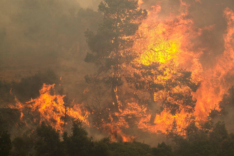 Flammen lodern bei einem Waldbrand nördlich von Athen - starke Winde fachen die Feuer in Griechenland immer wieder an.