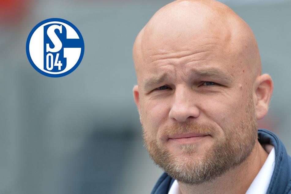 Schalke 04 und Schröder mit Rolle rückwärts: Ex-Mainzer unterschreibt bei den Knappen!