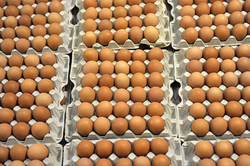 In den Niederlanden wurden Millionen Eier bereits zurückgerufen.