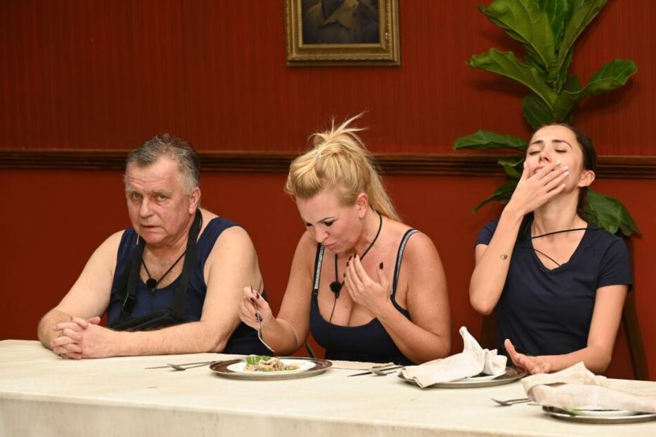 Während bei der Essprüfung ein neuer Kotzrekord aufgestellt wurde, durfte Verkehrs-Günni der Wendler-Ex Claudia Norberg (M.) und Anastasiya Avilova (r.) aufgrund seines ausgehandelten Vertrages beim Würgen zusehen.
