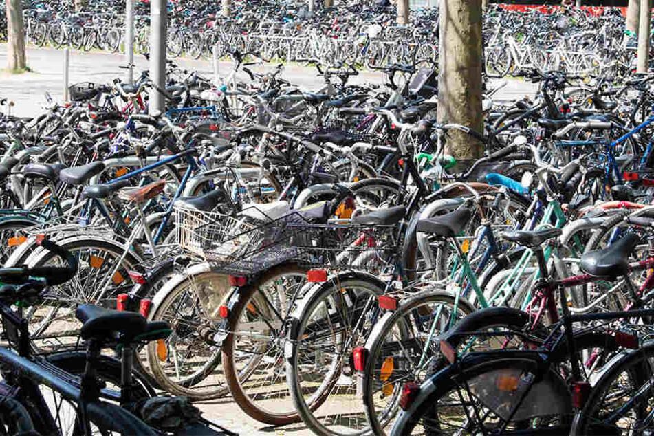 1500 Fahrräder sollen in der neuen Anlage Platz finden. (Symbolbild)