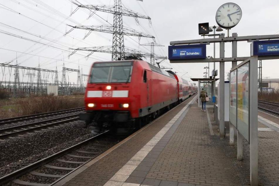 """In diesem Gleisbett der S-Bahnlinie 1 in Zschachwitz hielt einer der Täter das Opfer (40) mit Fußtritten """"gefangen"""", während der Zug einrollte."""
