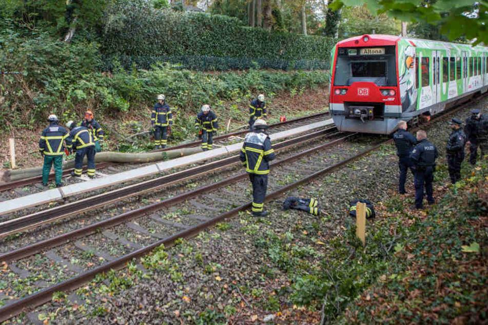 Die Feuerwehrkräfte befreiten die Bahnstrecke von dem umgestürzten Ast.