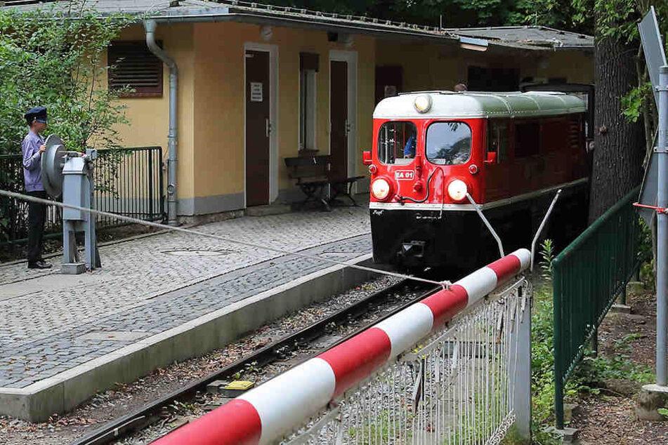 Schon wieder! Sex-Belästigung bei Dresdner Parkeisenbahn