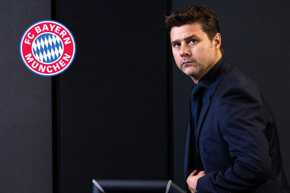 FC Bayern erteilt Pochettino Absage! Das sind die Gründe
