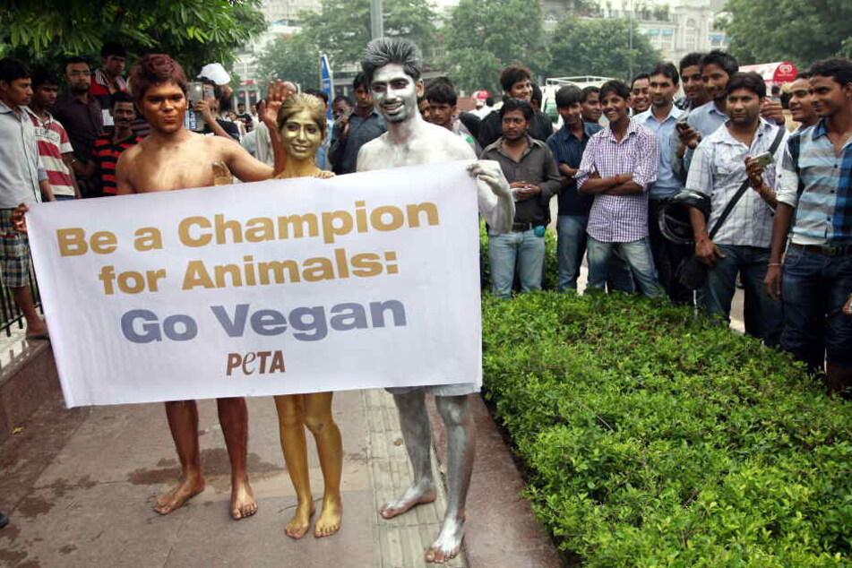 Auch PETA setzt sich für den veganen Lebensstil ein. Mit einer Demonstration wären die fast 100 Kaninchen jetzt verschont geblieben (Symbolbild).