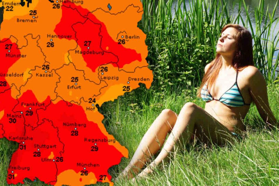 Der Sommer kommt zurück nach Deutschland. (Symbolbild)