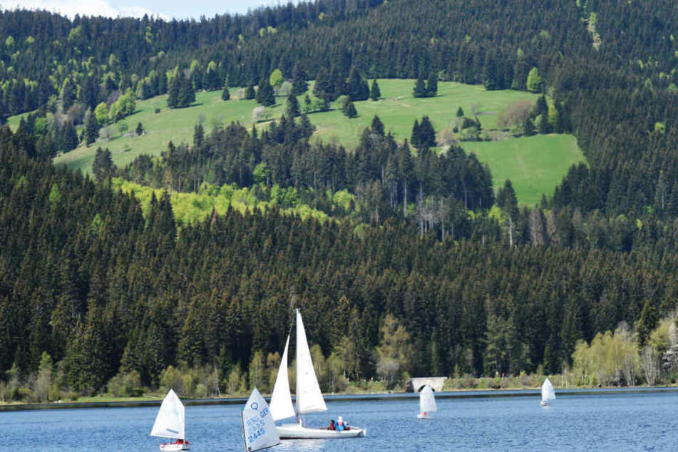 Auch am Schluchsee im Schwarzwald wurden immer wieder Schüsse gehört.