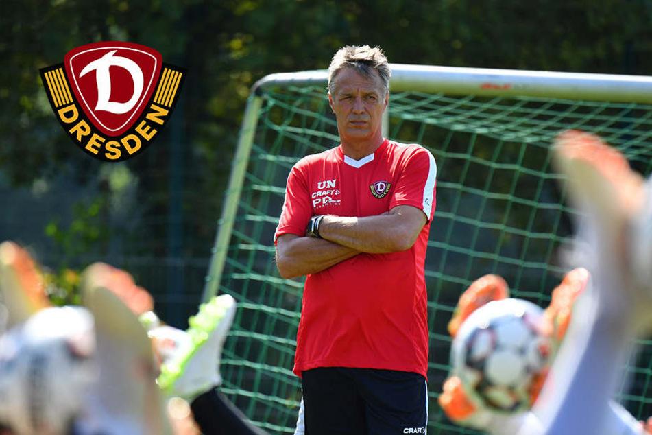 """""""Endlich geht es wieder los"""": Dynamo-Coach Neuhaus legt Saisonziel fest"""