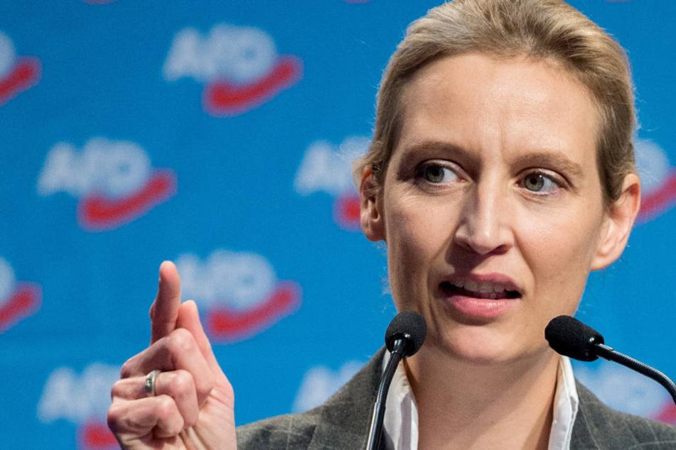 Ist gut darin die Schuld auf die Medien zu schieben: AfD-Fraktionschefin Alice Weidel. (Symbolbild)